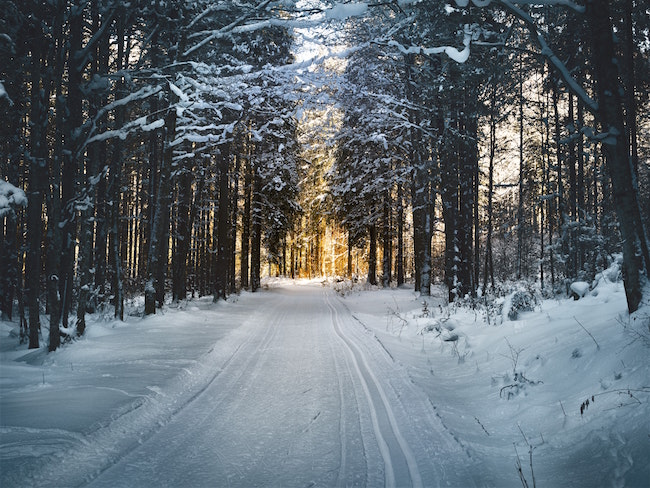 Prepare for Winter with a Tools and Resource Inventory